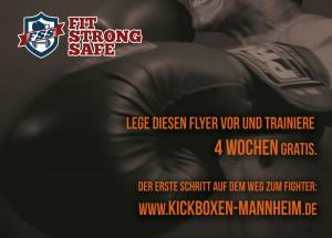 kickboxflyer-hinten